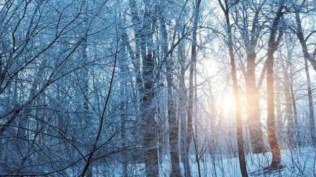 AEMET prevé un invierno con temperaturas superiores a la media en todo el país