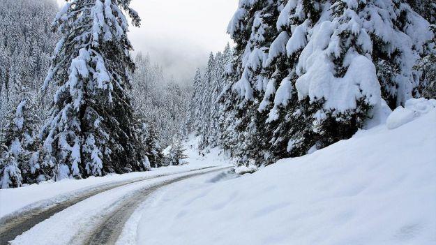 Consejos para 'sobrevivir' a una nevada