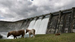 WWF solicita a Europa liberar a los ríos