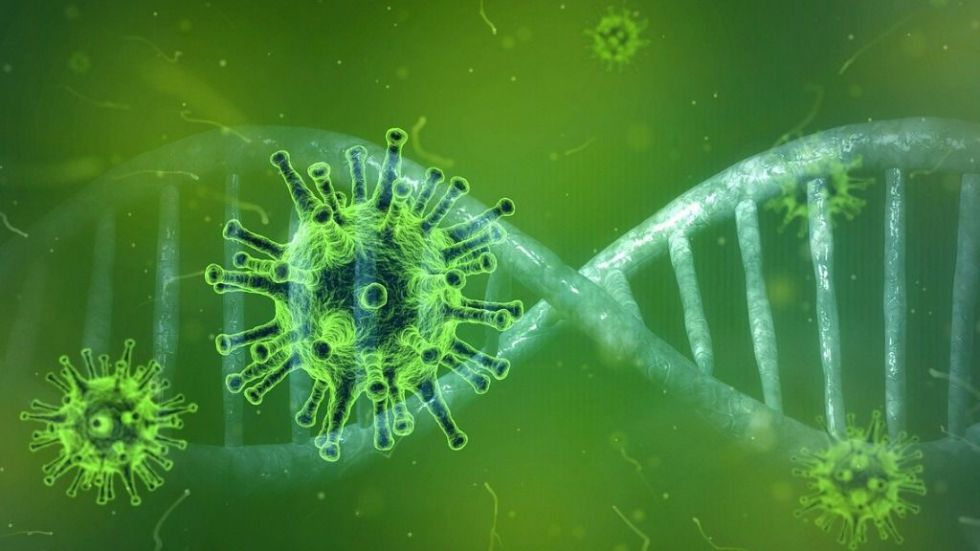 """La OMS eleva al coronavirus a la categoría de """"pandemia"""""""