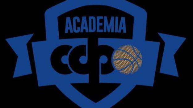 Nace la 'Academia CDP' del CB Ciudad de Ponferrada