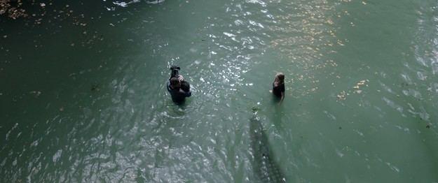 Infierno bajo el agua